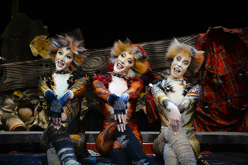 CATS Eastbourne